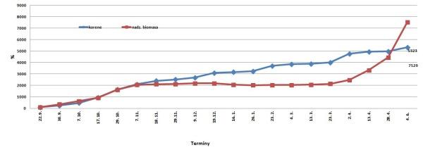 Dynamika rastu repky (čerstvá hmota - 2014/15 v%); prvý odber 100 %: korene 5,4 g/10 rastlín; nadzemná biomasa 59,6 g/10 rastlín, lokalita Červený Újezd, 405 m n. m., odroda DK Exstorm