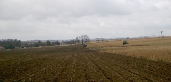 Příprava půdy pro kukuřici na jaře; na ploše byla vyseta jako meziplodina hořčice ana ní aplikováno 30 t chlévského hnoje na hektar