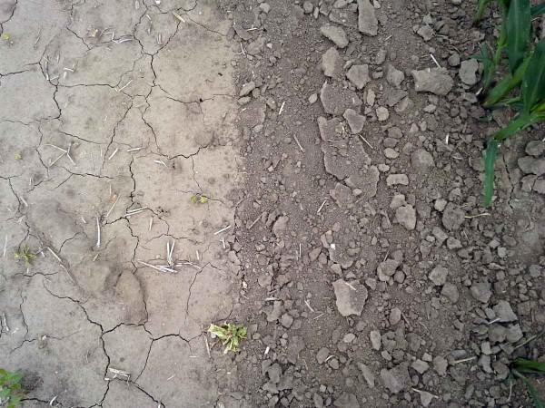 Obr. 4: Rozrušení půdního škraloupu