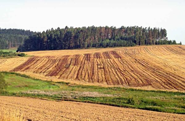 Obr. 4: Variabilita aplikace kapalných organických hnojiv při nerespektování závislosti mezi dávkou hnojiva adélkou pozemku
