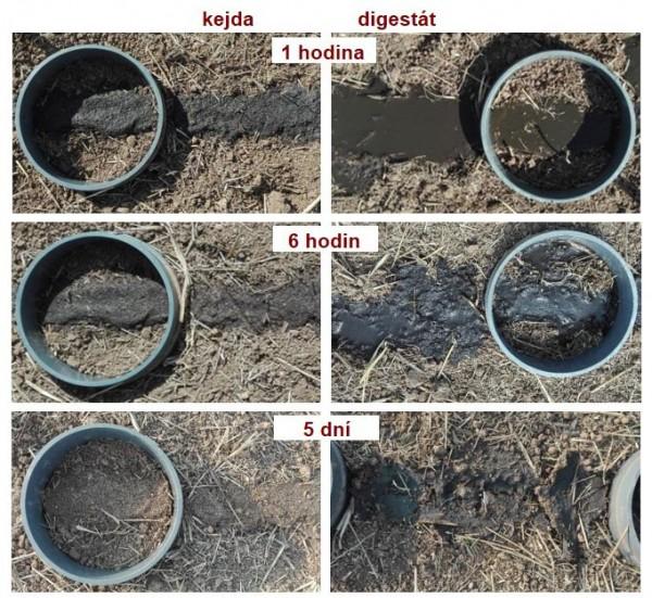 Obr. 1: Infiltrace kejdy adigestátu do půdy po lokální povrchové aplikaci