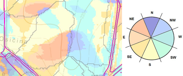 Obr. 1: Příklad půdního bloku svýraznou svahovou variabilitou; uprostřed snímku je patrná ostrá hrana vymezující odtokové celky (orientace svahu je odlišena jednotlivými barvami viz růžice)