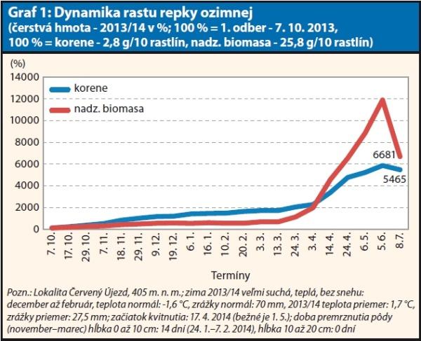 Graf 1: Dynamika rastu repky ozimnej (čerstvá hmota - 2013/14 v%; 100 % = 1. odber - 7. 10. 2013, 100 % = korene - 2,8 g/10 rastlín, nadz. biomasa - 25,8 g/10 rastlín)