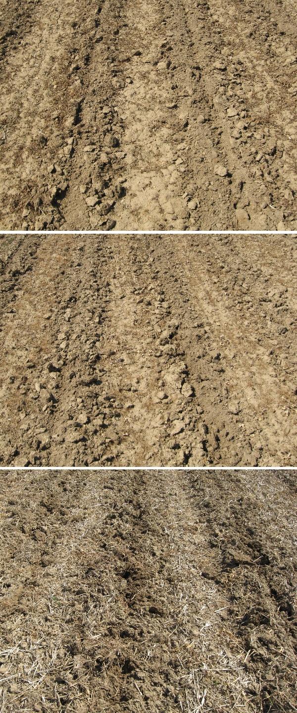 Obr. 3: Stav povrchu pozemku po provedení pásového zpracování půdy na variantách 3, 2 a5 (shora) 28.4.2009. (foto Brant)