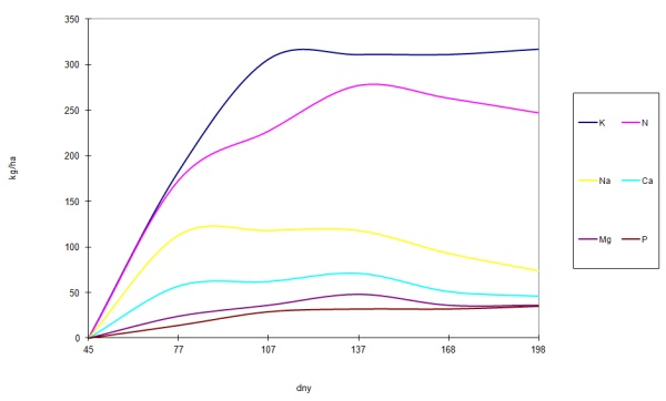 Graf 1: Čerpání živin cukrovkou vprůběhu vegetace