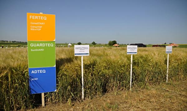 Porosty ošetřené přípravky Soufflet agro na Velkém polním dni